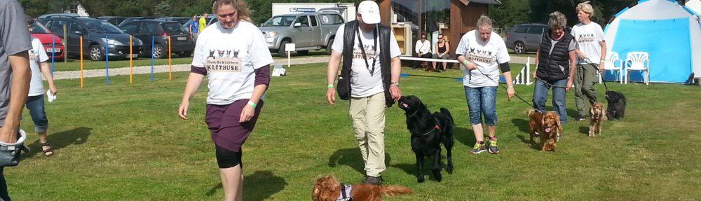 Blokhus-hundefestival